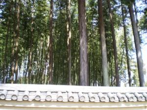 Shokoku-ji Temple1